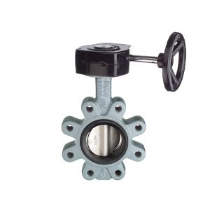 SG Iron Wafer Butterfly Valves, PN16, EPDM ST ST Disc, Gear Operated