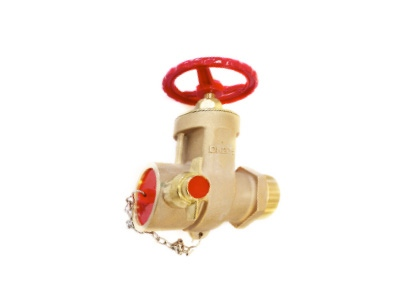 PN16 65mm Male Screwed Valve